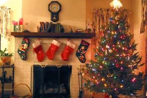 Aktive forvaltere tar tidlig juleferie